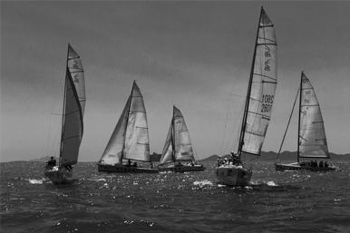 青岛国际帆船周摄影大赛 作品《冲刺》夺魁